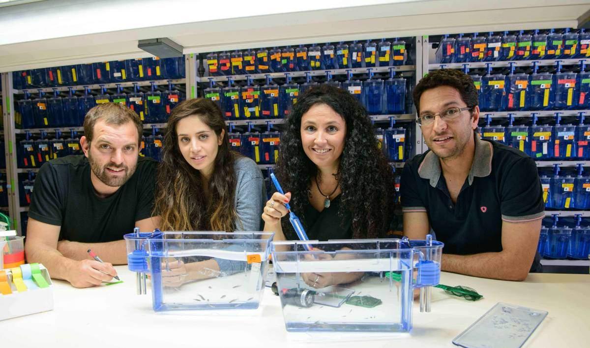 "מימין: ד""ר גדעון חן, ד""ר קרינה יניב, ליהי אסף וחוליאן ניסנבוים. אילן יוחסין"