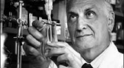 Prof. Leo Sachs