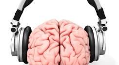 brain and headphones