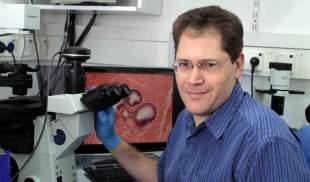 Dr. Valery Krizhanovsky