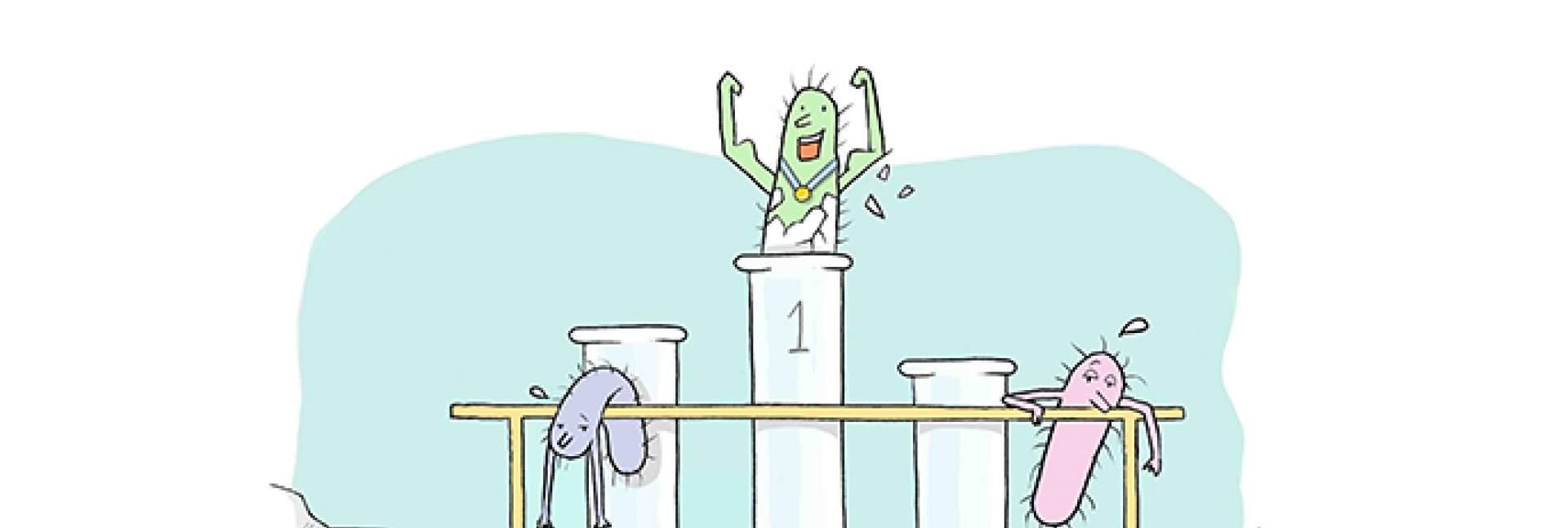 bacteria compete